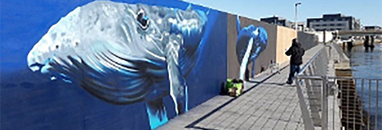 A whale mural at Dundee shoreline banner image